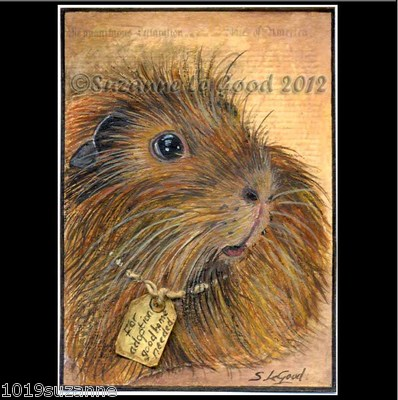ACEO ORIGINAL GUINEA PIG CAVY MIXED MEDIA ANTIQUE PAINTING BY SUZANNE LE GOOD