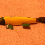 ANTIQUE ICE FISHING SPEARING DECOYS FROM NORTHERN MINNESOTA EXTREMELY RARE